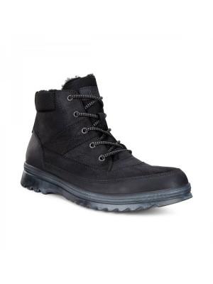 Ботинки мужские зимние Darren ECCO